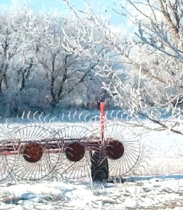 FrostyMorn400