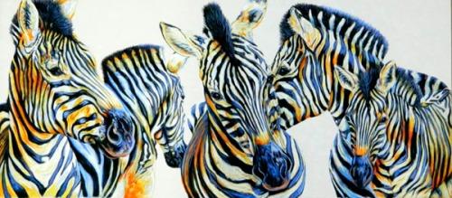 ZebraWip5_600