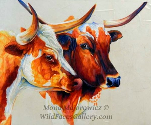 Longhorns600Wip2Crop