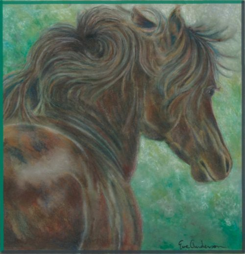 Eve_Anderson___horse_project