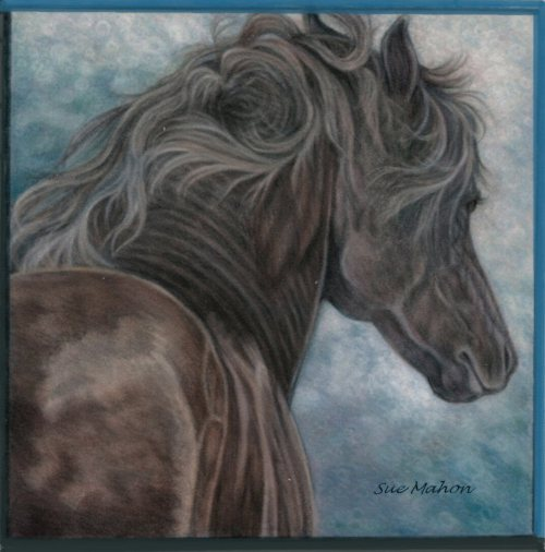 Sue_Mahon___horse_project