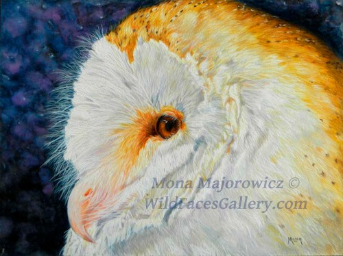Luna - Barn Owl Painting 10x13 inches water soluble mixed media on suede