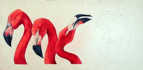 Flamingos-S