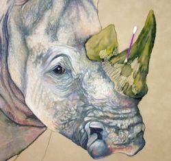 RhinoAddWate