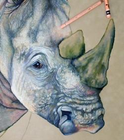 RhinoColorI