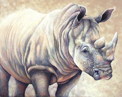 RhinoFull500
