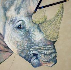 RhinoInktens
